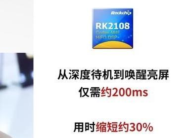 双架构,双待机,低功耗,瑞芯微智能穿戴芯片RK2108亮相
